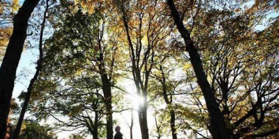 Phoenix Park Named Top Picnic...