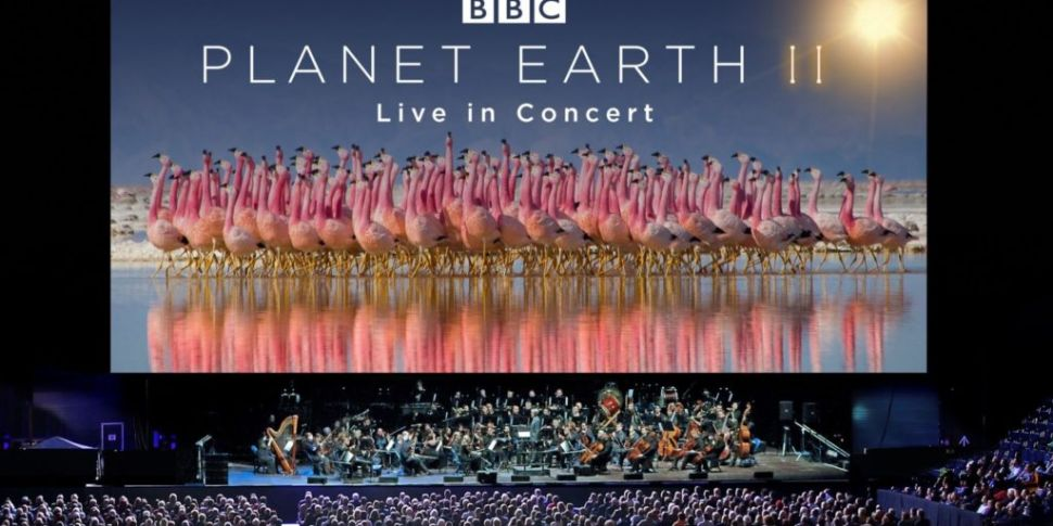 Planet Earth II Live In Concer...