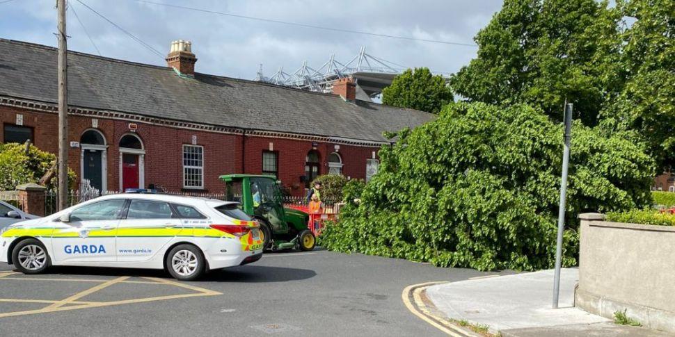 Woman Injured After Tree Falls...