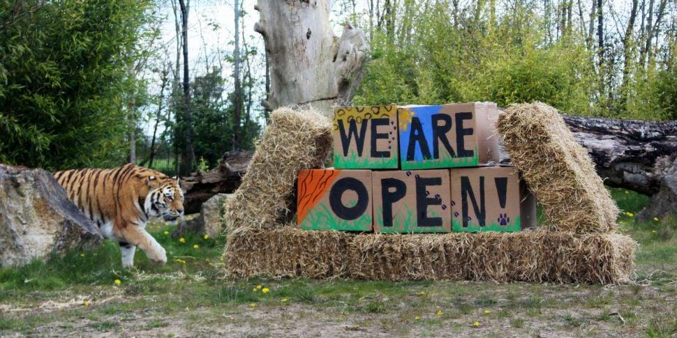 Tayto Park Zoo Confirms April...
