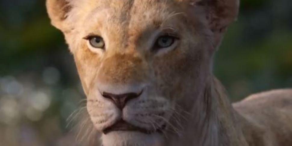 Watch Beyoncé Make Her Lion Ki...