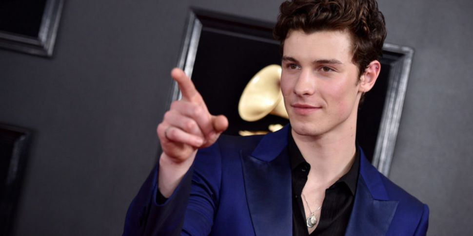Shawn Mendes Spotted Wearing R...