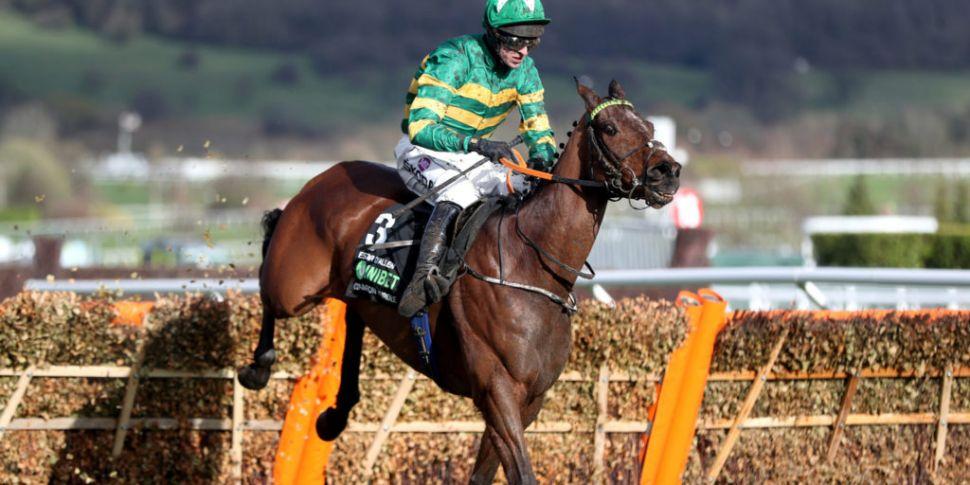 Champion Hurdle hero Espoir D'...