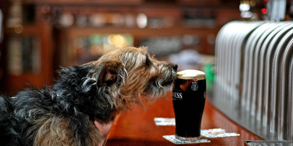 The Cheapest Dublin Pubs For A...