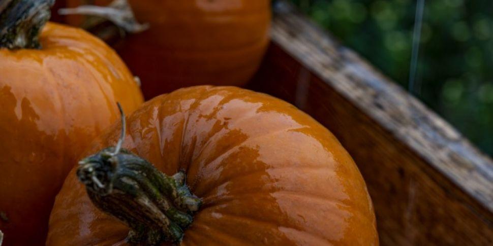 Halloween Weather Forecast: Ra...