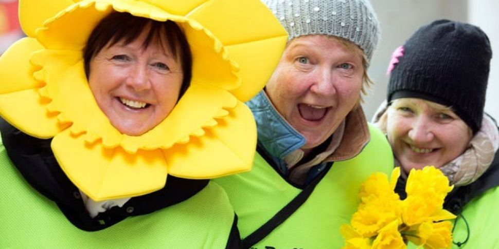 Dig Deep For Daffodil Day 2018 Today