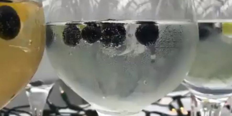 Plans To Treble Irish Gin Sales
