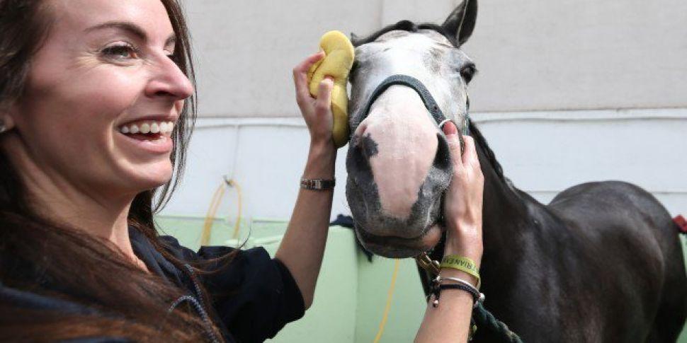 Dublin Horse Show Kicks Off In...