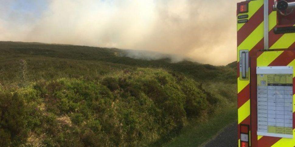 Gorse Fire Breaks Out In Dubli...