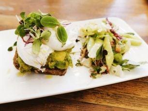Holy Guacamole - UK Café Cuts Avocado Over Climate Concerns
