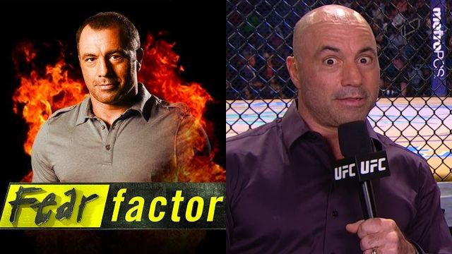 Does Everyone Realise Just How Staggeringly Successful Joe Rogan S Career Has Been Balls Ie