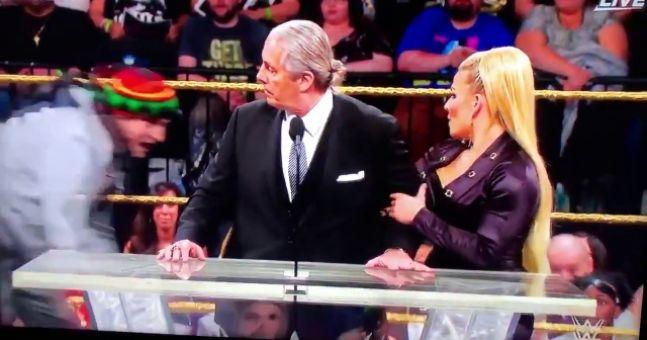 Bret The Hitman Hart Attacked By Fan While Making Wwe Hof Speech Balls Ie