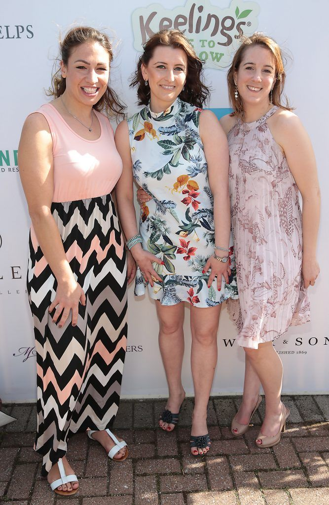 Wiebke Begere, Magda Szetela and Felicity Iliopoulls Fiona Fitzsimons and Darren Warren at the June Party in the Park at the Phoenix Park Polo Club to raise funds for the Irish Motor Neurone Disease Association. Picture by Brian McEvoy