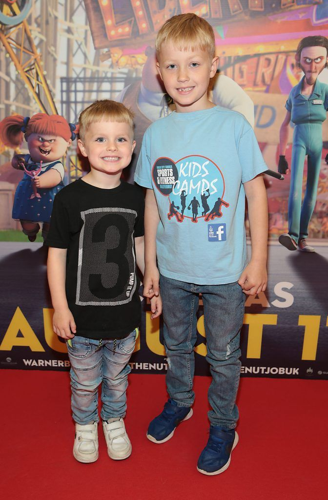 Lewis Greene and Ryan Greene at the special family preview screening of The Nut Job 2 at The Odeon Cinema in Point Village, Dublin. Picture by Brian McEvoy