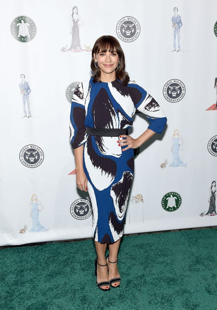 Rashida Jones attends The Turtle Conservancy's Fourth Annual Turtle Ballat The Bowery Hotel on April 17, 2017 in New York City.  (Photo by Jamie McCarthy/Getty Images)