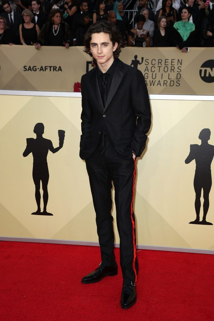 LOS ANGELES, CA - JANUARY 21: Actor Timothee Chalamet attends the 24th Annual Screen Actors Guild Awards at The Shrine Auditorium on January 21, 2018 in Los Angeles, California. 27522_017  (Photo by Frederick M. Brown/Getty Images)