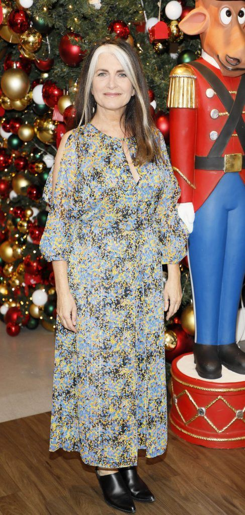 Cathy O'Connor  pictured at the Arnotts Christmas Gifts Preview. Photo by Kieran Harnett