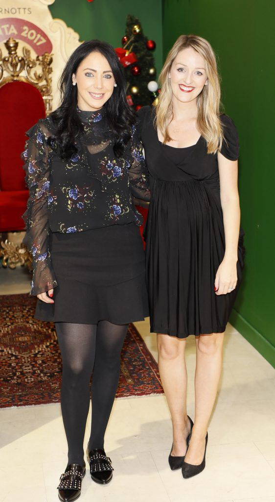 Vena Doyle and Natalie Burke  pictured at the Arnotts Christmas Gifts Preview. Photo by Kieran Harnett