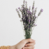 Five Ways To Heal Your Skin Using Lavender