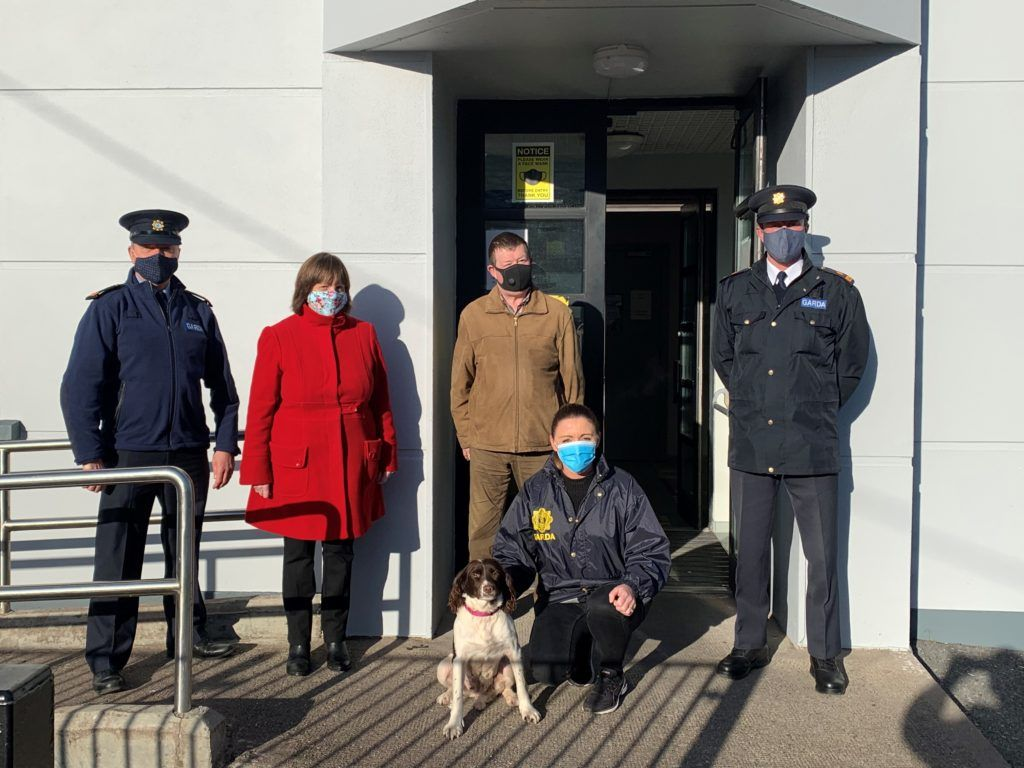 Stolen dog tracked down in UK and reunited with Cork family