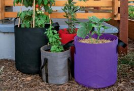 Six Imaginative Ways To Use Grow Bags In Small Spaces