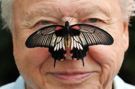 David Attenborough: Images From His Life As He Turns 95