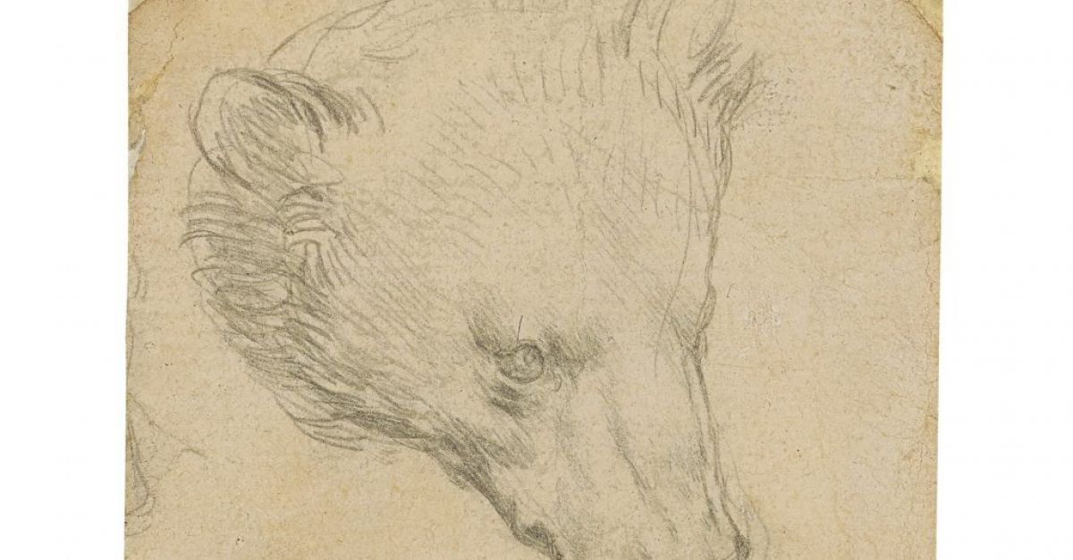 Leonardo da Vinci drawing expected to fetch up to €13m at auction