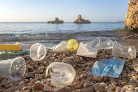 20 Firms Responsible For Over Half Of All Single-Use Plastic Waste