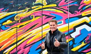 David Hasselhoff Joins German Covid Vaccine Campaign