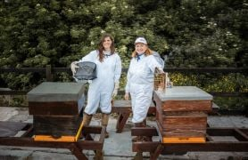 Swarm Of Bees Inspires Mother And Daughter To Create New Gin