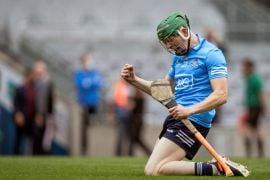 Gaa Round-Up: Dublin And Kilkenny Book Places In Leinster Hurling Final