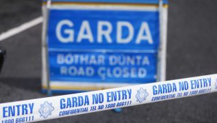 Man (40S) Killed In Single-Vehicle Collision In Co Cork