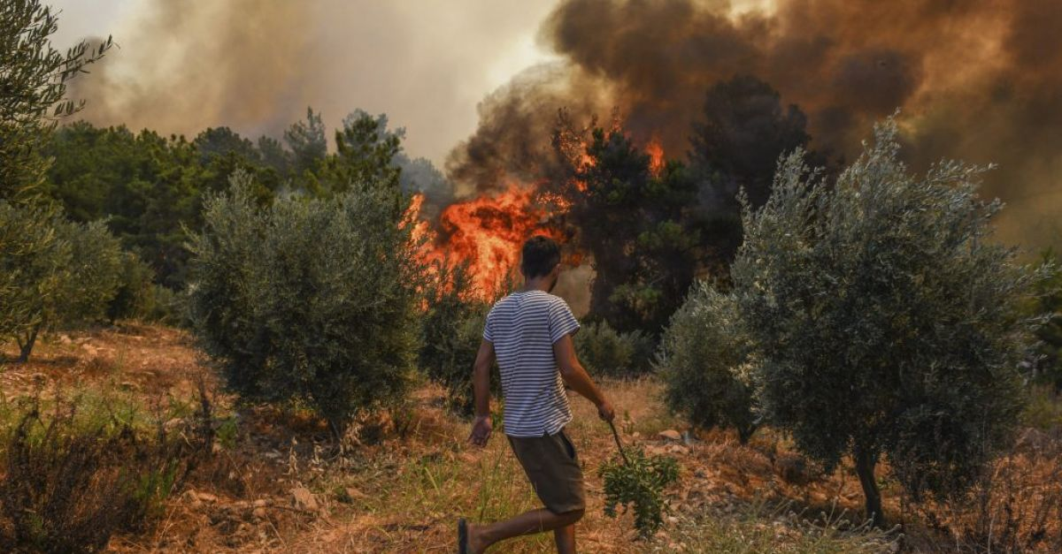 Turkey evacuates panicked tourists by boat from wildfires
