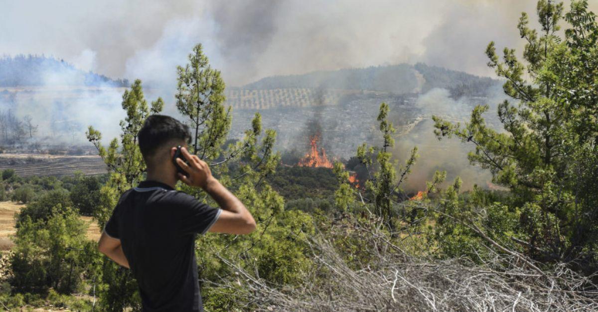Majority of wildfires in Turkey under control