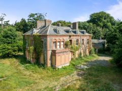 Crumbling Laois Mansion At Slashed Price In Hopes Buyer Will Restore Former Glory