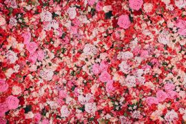 Diy Flower Walls Are Trending On Tiktok – Here's How To Create One Yourself