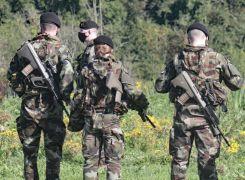 Gardaí Arrest 12 After Searches Targeting Limerick Organised Crime