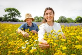 Birds And Bees 'Secret Weapons' To Raising Happiness Levels