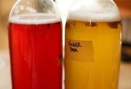 Unauthorised Health Claims On 91% Of Beverages Like Kombucha, Says Fsai