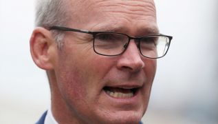 Eu To Propose Removal Of Majority Of Northern Ireland Checks, Coveney Says