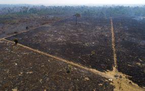 Climate Activists Urge Investigation Of Brazil's Bolsonaro Over Amazon Policies