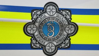 Women's Council Critical Of Garda's Three-Month Sentence For Domestic Violence