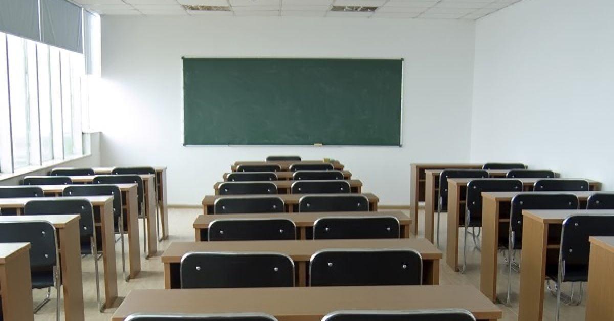 Speech Sound Disorder essay for college