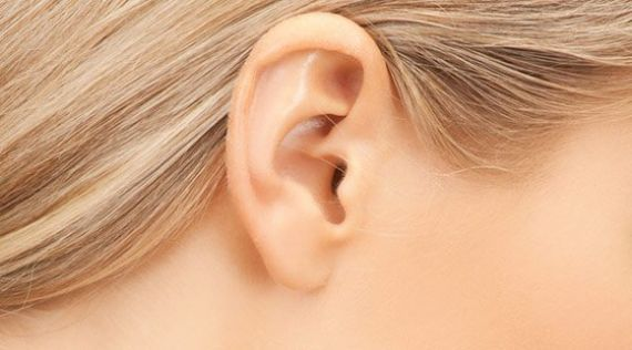 <p>Otoplasty<br />