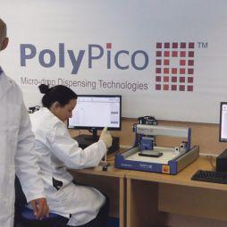 Poly-Pico picks up pace