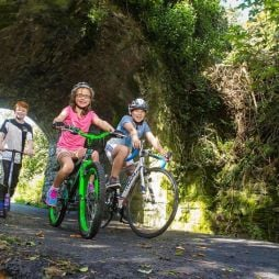 Galway politicians lock horns over greenway plan
