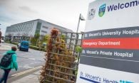 Mary Regan: Why the new maternity hospital has been a difficult delivery