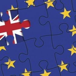 Stephen Kinsella on Brexit