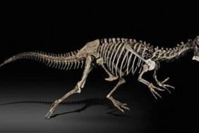 Dinosaur trade seeks Wall Street status