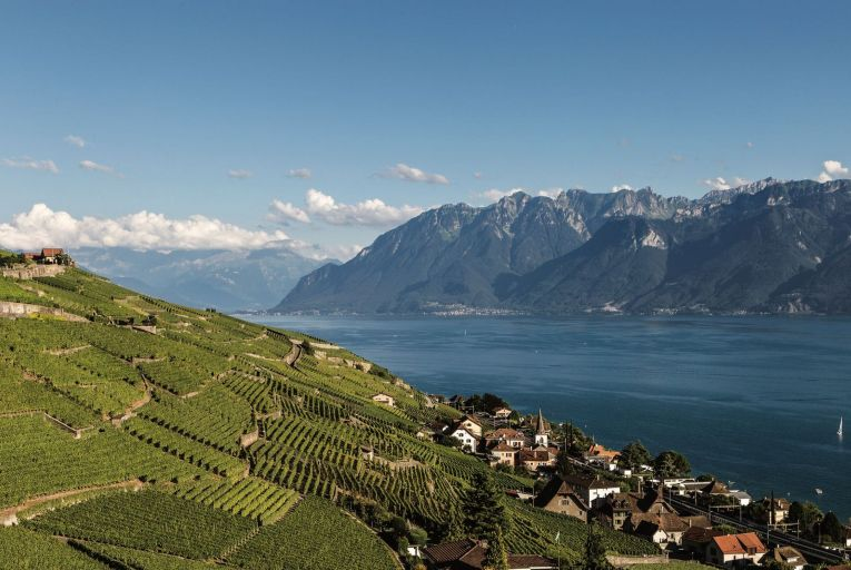 Vineyards in the Lavaux area by Lake Geneva in Switzerland. The wines of the Alps are hard to make and are made in small quantities. Picture: Getty